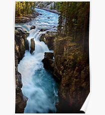 Sunwapta Falls in Jasper National Park Poster