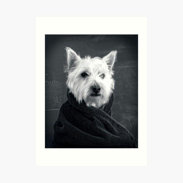 Portrait of a Westie Dog Art Print