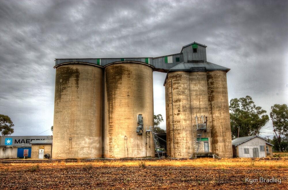 Standing Tall  Silos stockinbingal NSW Australia  by Kym Bradley