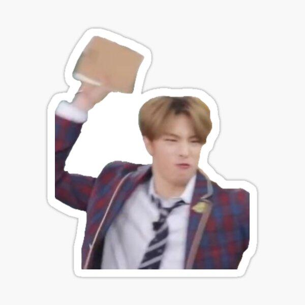 Stray Kids Hyunjin Book Meme Sticker