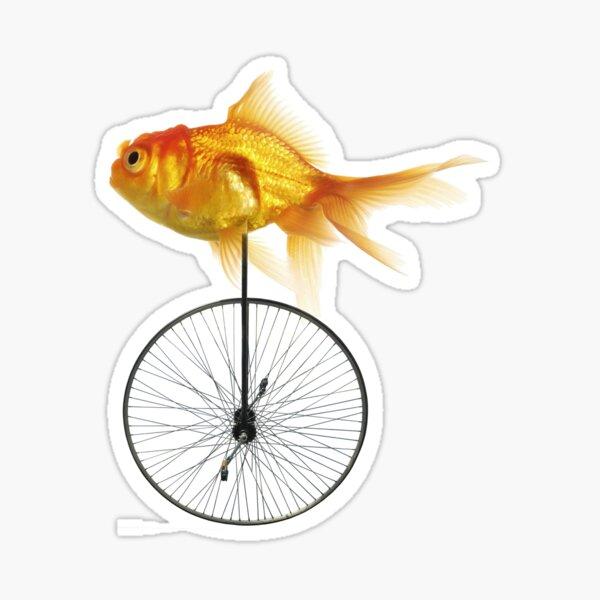 unicycle goldfish Sticker