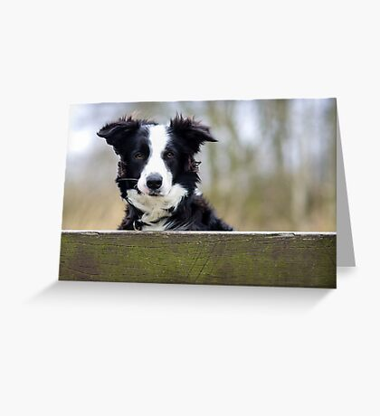 Mila Greeting Card