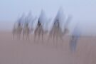 Desert Ghosts - Moroccan Sahara by Debbie Pinard