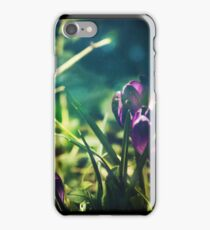 Spring Magic (Diptych) iPhone Case/Skin