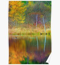 Fall Colors on the Water Poster