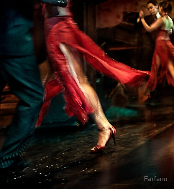 Tango Reflection by Farfarm