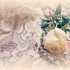 Soft Gentle Love by Diane Arndt