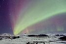 Magical Night by Evelina Kremsdorf