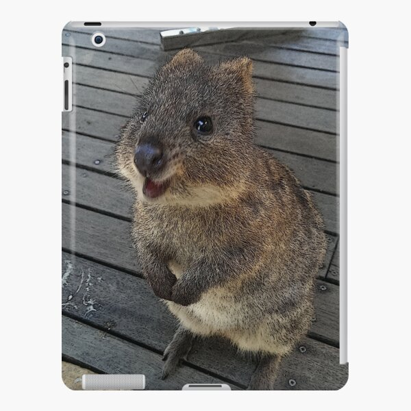 Be Quokka happy iPad Snap Case
