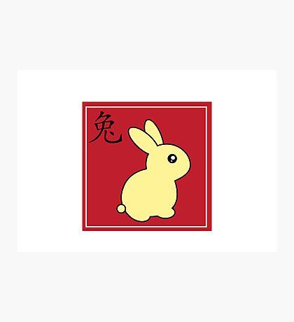 Bunny Rabbit - Chinese Zodiac Photographic Print