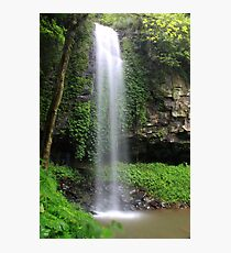 Crystal Falls, Dorrigo National Park Photographic Print