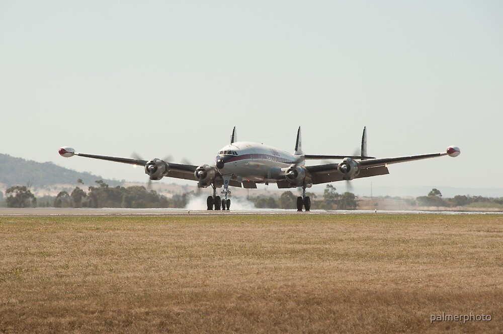 Connie Landing by palmerphoto