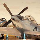 "P51 Mustang ""A68-118 Eclat""  by palmerphoto"