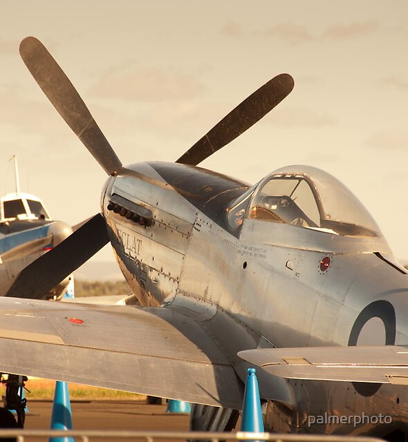 "P51 Mustang ""A68-118 Eclat""  by palmerphoto"
