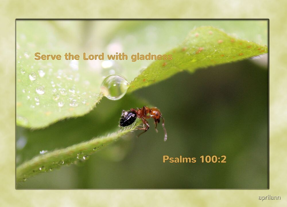 Serve the Lord with Gladness by aprilann