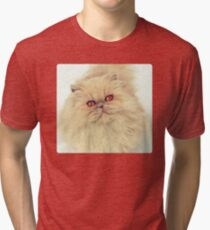 Who are you calling a big ball of fur?  Tri-blend T-Shirt