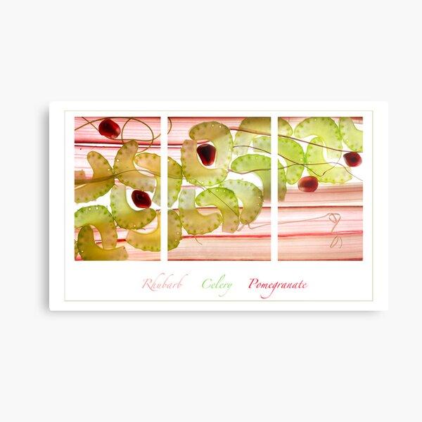 Rhubarb, Celery and Pomegranate Metal Print
