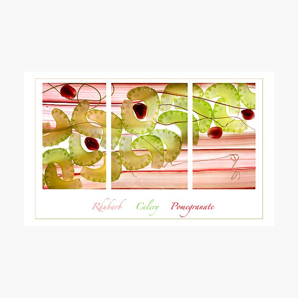 Rhubarb, Celery and Pomegranate Photographic Print
