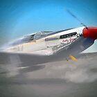 P-51 Mustang by artstoreroom