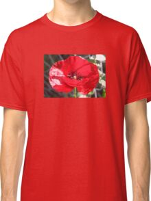 Single Red Poppy Flower  Classic T-Shirt