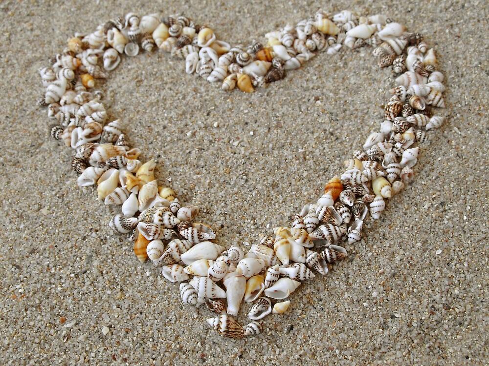 Heart arranged from Seashells by kirilart