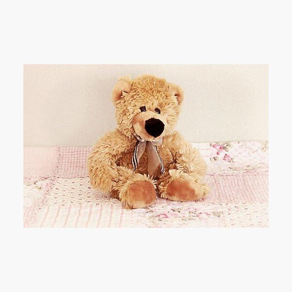 Sweet little bear Photographic Print