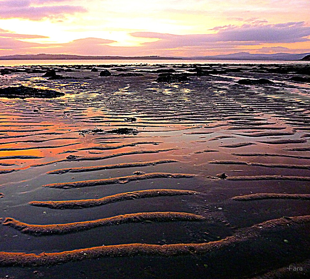 Low Tide At Mill Bay by Fara