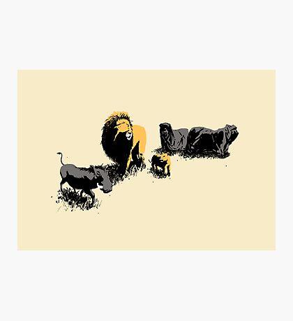 Muslim Lions Photographic Print