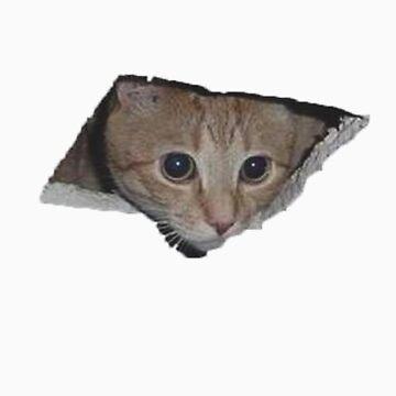 Ceiling Cat by adamrwhite