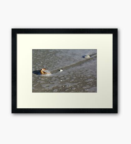 In With the Tide Framed Print