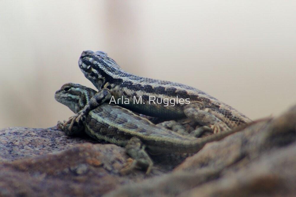 Lizards In Love by Arla M. Ruggles
