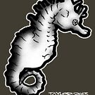 Seahorse 02 by Bret Taylor