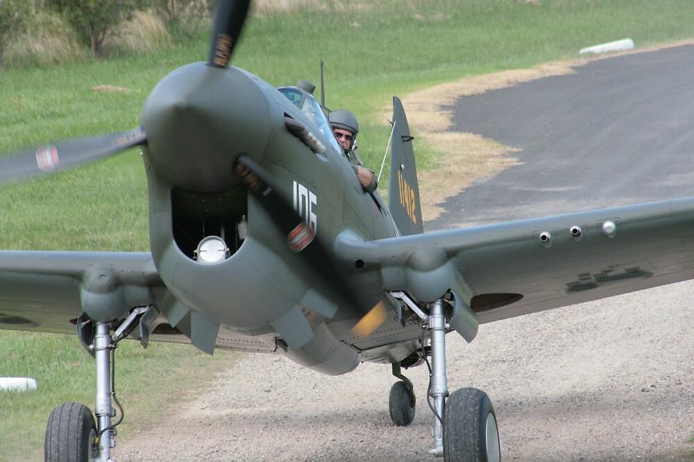 P-40F Warhawk by Shaun O'Malley