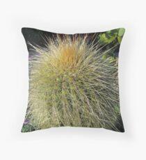 Prickly Cactus Close up Throw Pillow