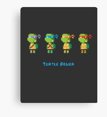 Turtle Power Canvas Print