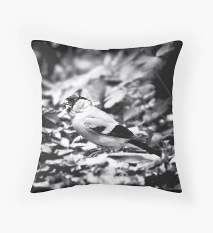 sparrow (003)  Throw Pillow