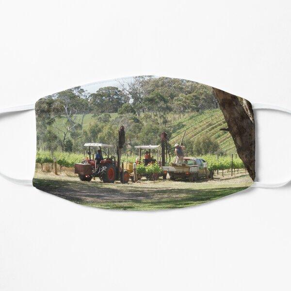 Ramming posts on the Vineyard - by South Australian artist Avril Thomas Mask
