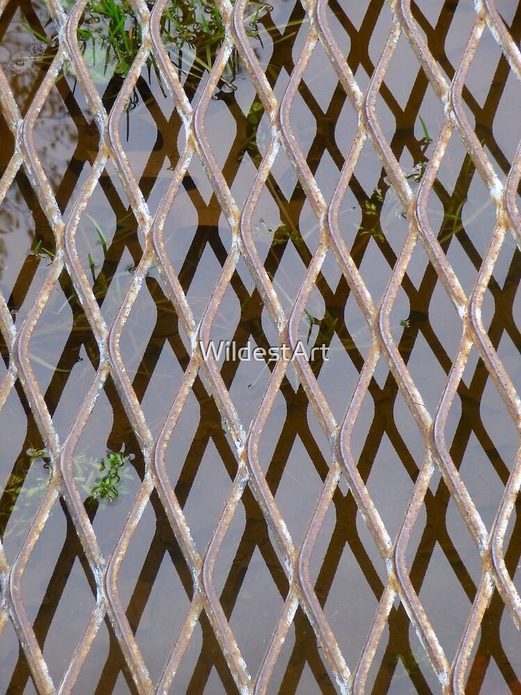 Tiny Bridge by WildestArt