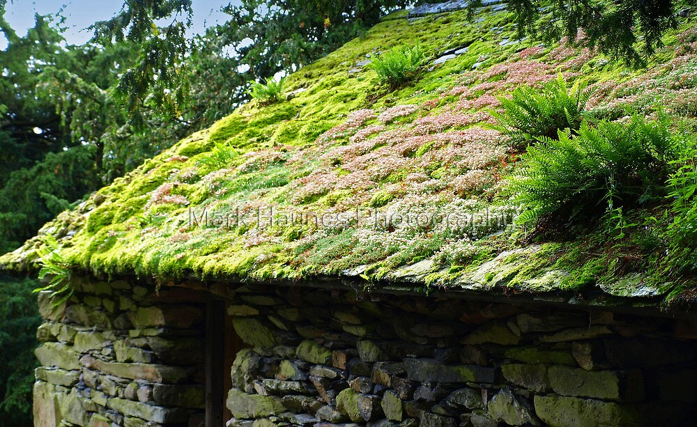 Fluffy Roof, Lake District Barn by Mark Haynes Photography