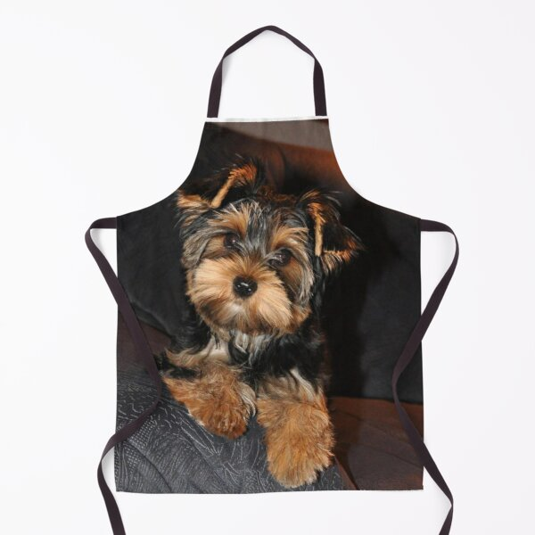 Cute Yorkshire Terrier Dog Apron