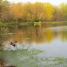 Fall Day on the Lake by artgoddess