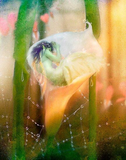 The Faerie's Nest by Aimee Stewart