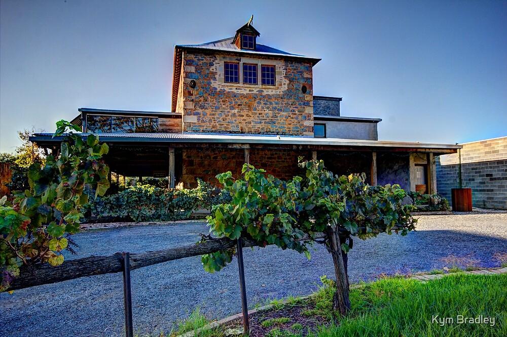 Old Mill Cowra  NSW  Australia  by Kym Bradley