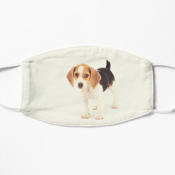 Beagle Dog Gift Mask