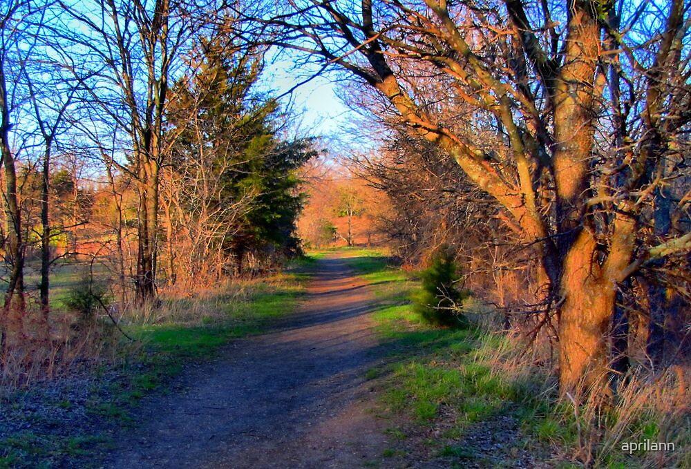 Walking Path by aprilann