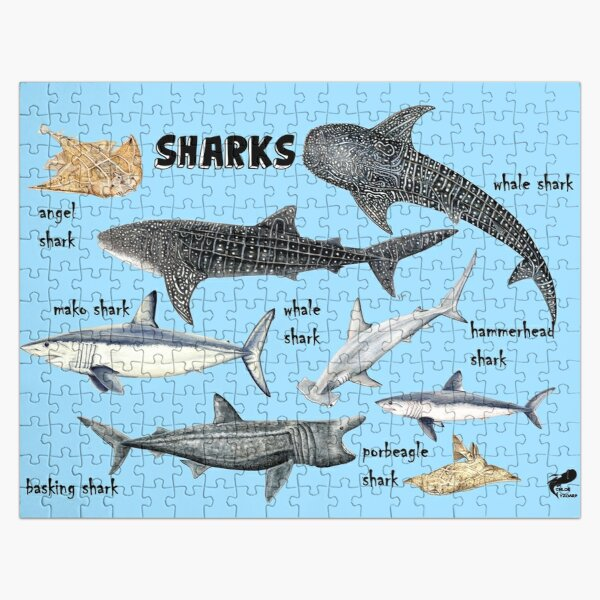 Sharks for shark lovers Jigsaw Puzzle