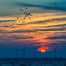 Eemmeer early morning by THHoang