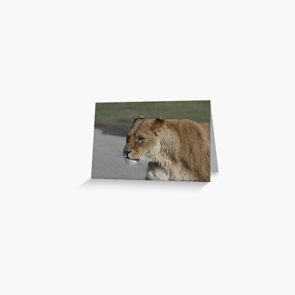 Lion Queen! Greeting Card