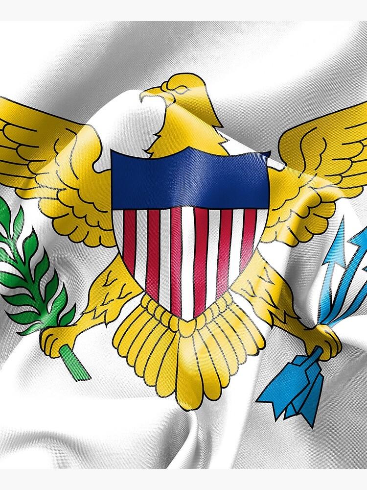 United States Virgin Islands Flag by MarkUK97