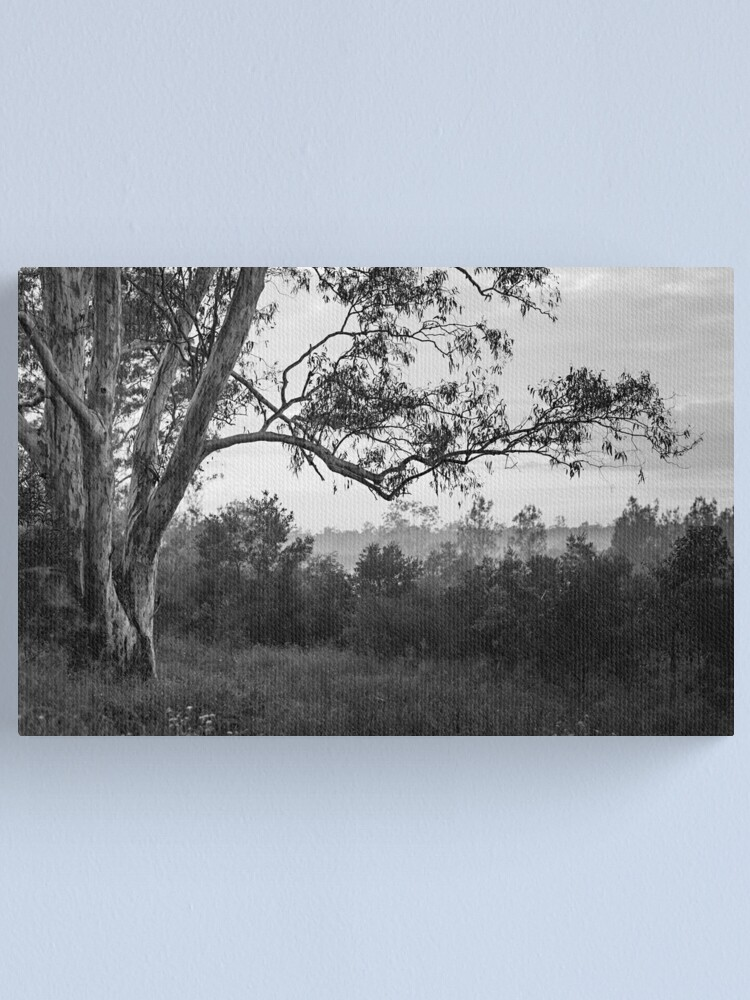 Alternate view of The old gum tree Canvas Print